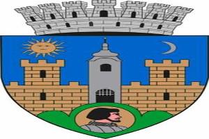 Primaria-Sfantu-Gheorghe-are-stampila-proprie-cu-stema-oficiala-a-municipiului