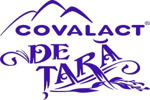 image-2012-02-9-11463767-63-logo-cvl